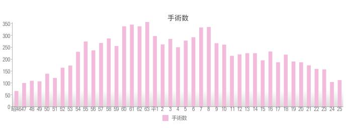 2013年手術数